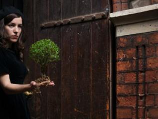 'TOYNBEE'-Geraldine Pilgrim