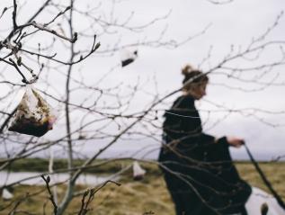 The Tea Tree : SagaFest Iceland2015